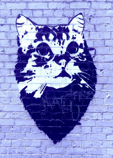 Street Art 002 - Oliver Lane; Stencil Cat 03