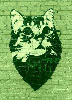Street Art 002 - Oliver Lane; Stencil Cat 04