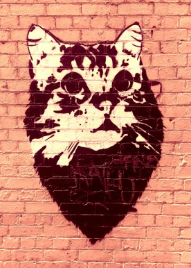 Street Art 002 - Oliver Lane; Stencil Cat 05